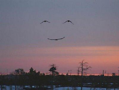 God's+smile
